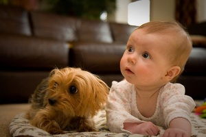 Helping-your-two-legged-and-Four-legged-baby-bond1